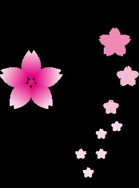 花魁体験で思い出に残る写真を|花魁体験スタジオ「やまと桜」